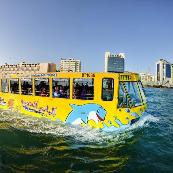 Wonder Bus Tours (5)